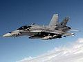 Spanish Air Force EF-18 DD-SD-00-02833 cropped.jpg