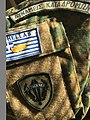 Special Forces unit flash that is emblazoned with ΔΥΝΑΜΕΙΣ ΚΑΤΑΔΡΟΜΩΝ (Raider Forces)..jpg