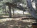 Spil Dağı Milli Parkı - 07.jpg