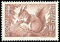 Squirrel-1953.jpg