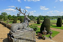 Stag - Bowood House - Wiltshire, England - DSC00786