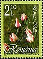 Stamps of Romania, 2006-039.jpg