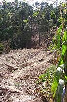 Stan Landslide 1.jpg