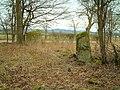 Standing Stones - geograph.org.uk - 138718.jpg