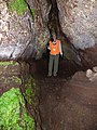Starr-170304-0265-Pteris cretica-lava channel with Kim-Lower Waiohuli Trail Polipoli-Maui (32999704480).jpg