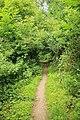 Steenbergse bossen 14.jpg
