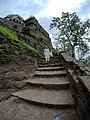 Steps toward top.jpg