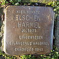 Stolperstein Duisburg Lösorterstraße 59 Elschen Harmel.JPG