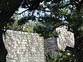 Stone Wall and Foliage - Nijo Castle - Kyoto - Japan (47929401306).jpg