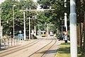 Straßenbahn-Flottenwechsel in Ulm.jpg