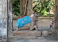 Sun Temple, Modhera - Nandi.jpg