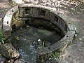 Svyatoshyn ponds spring 02.JPG