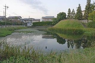 Tanaka Domain
