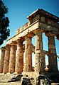 Temple E (Hera) at Selinunte sel14.jpg