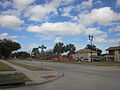 Terry Parkway Jan 2012 Coral Streetlamp.JPG