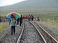 The 2009 Ribblehead Viaduct walk - geograph.org.uk - 1532004.jpg