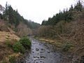The Afon Ystwyth from the Alpine Bridge - geograph.org.uk - 653171.jpg