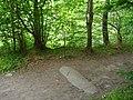 The Balfour Stone - geograph.org.uk - 515486.jpg