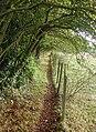 The Chalkland Way, Pocklington - geograph.org.uk - 587690.jpg