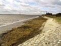 The Humber River Bank - geograph.org.uk - 723222.jpg