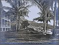 The Isthmian Canal Commission (ICC) Sanitarium, Taboga Islan Wellcome V0030233.jpg