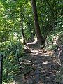 The Pallisades Interstate Park, New Jersey. August 2008 - panoramio - Gary Miotla (3).jpg