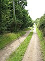 The Wherryman's Way - to Rockland St Mary - geograph.org.uk - 1413192.jpg