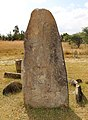 Tiya, parco delle stele, secondo gruppo, stele databili all'xi-xii secolo circa 22.jpg