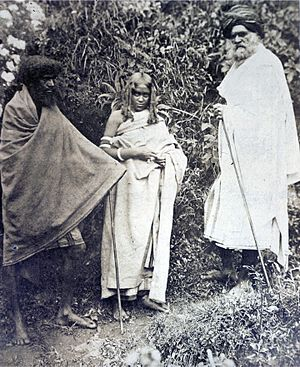 Toda people - Photograph of two Toda men and a woman. Nilgiri Hills, 1871.