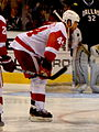 Todd Bertuzzi Red Wings 2010-12.jpg