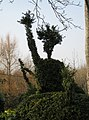 Topiary hedge - Rampisham - geograph.org.uk - 1215235.jpg