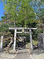 Torii gate of Ise-oomikami shrine Kaminomiya.JPG