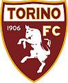 Torinofk.jpg