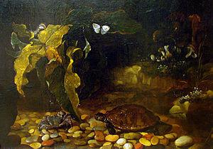 Paolo Porpora - Paolo Porpora, Tortoise and Crab, Musée des Beaux-Arts de Nancy, 1656