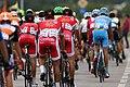 Tour of Austria 2017 - 1st stage (07).jpg