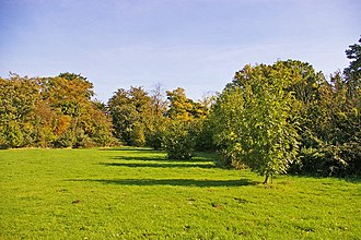 Trent Park - Looking east in Trent Park from near the entrance opposite Oakwood Station.