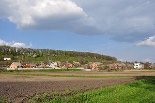 Terny village in Lubny Raion, Poltava Oblast, Ukraine