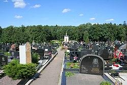 Troekurovo Cemetery Graves.jpg