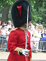 Trooping the Colour 2006 - P1110261 (169173498).jpg