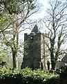 Twr Eglwys Y Santes Fair, Llanfairynghornwy - geograph.org.uk - 1259807.jpg