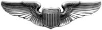 USAAF Wings