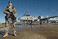 United States Air Force 355th Security Force Squadron guardsman.jpg