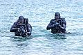 United States Navy SEALs 520.jpg