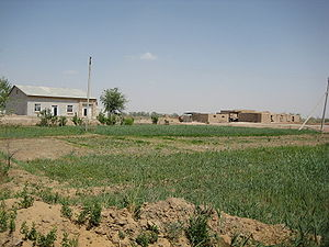 Dehkan farm - A typical dehkan farm in Khorezm Province, Uzbekistan.