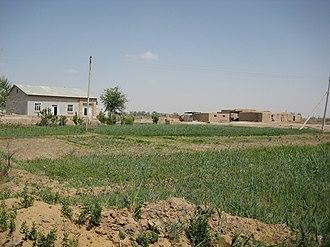 Dehkan farm - A typical dehkan farm in Khorezm Province, Uzbekistan.