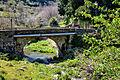 Vescovato pont sur le Cintrone.jpg