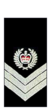 Vic-Polizei-Senior-Sergeant.png