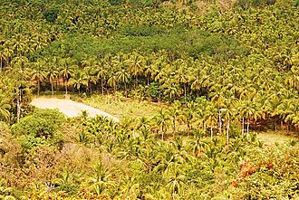 Poomala - Image: View from Poomala