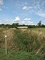 View along an overgrown ditch - geograph.org.uk - 1451471.jpg