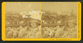 View from Summer Street, from Robert N. Dennis collection of stereoscopic views.png